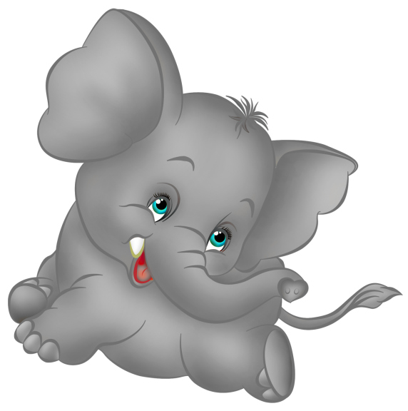 Bebe Elephant