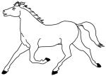 Coloriage cheval au galop