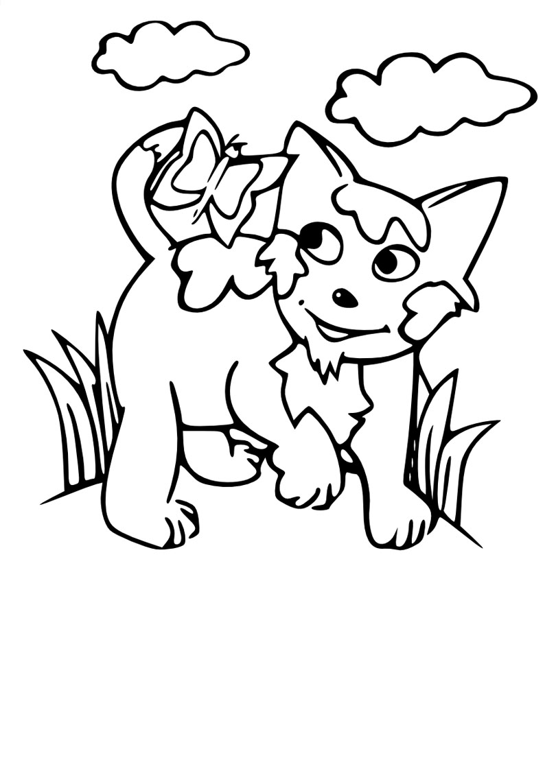 Coloriage chat nature