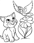 Coloriage chat oiseau