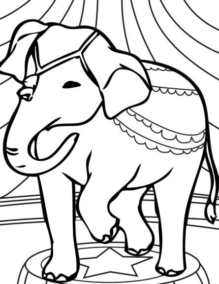 Coloriage elephant de cirque