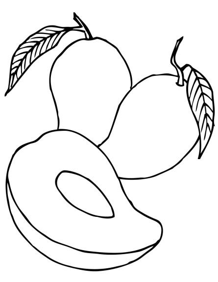 Coloriage poire
