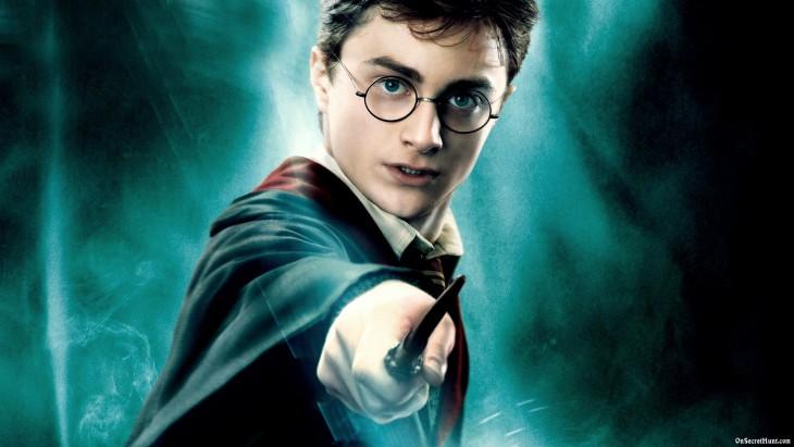 Harry Potter baguette