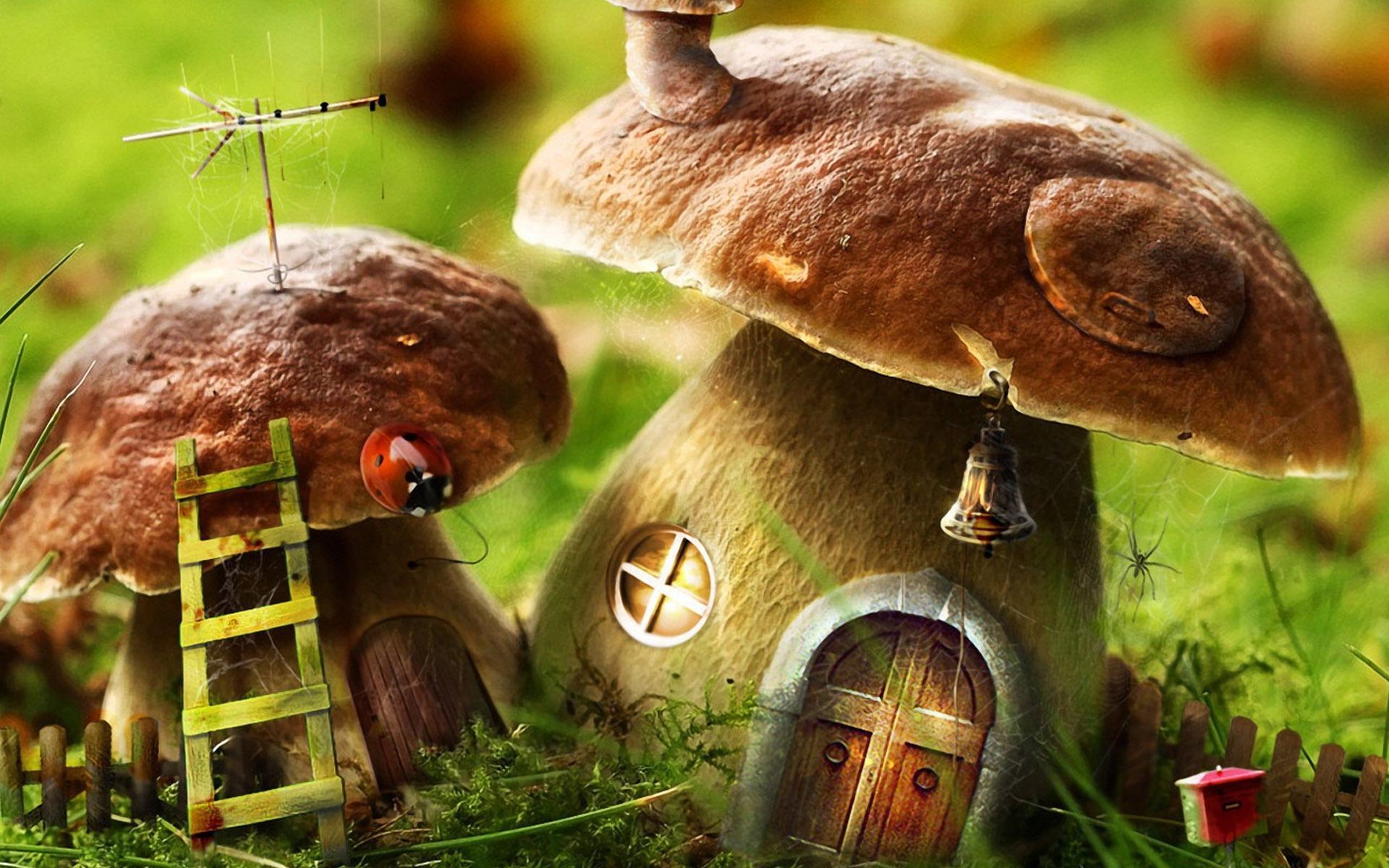 Coloriage d'une maison champignon à imprimer