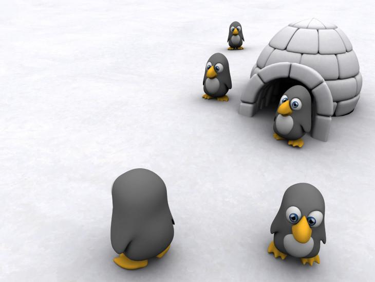 Pingouin igloo
