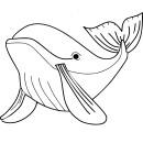 Baleine coloriage