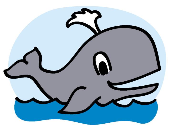 Coloriage Baleine A Imprimer Gratuit.Coloriage Requin Baleine Dessin Dessin De Baleine Marnfozine Com