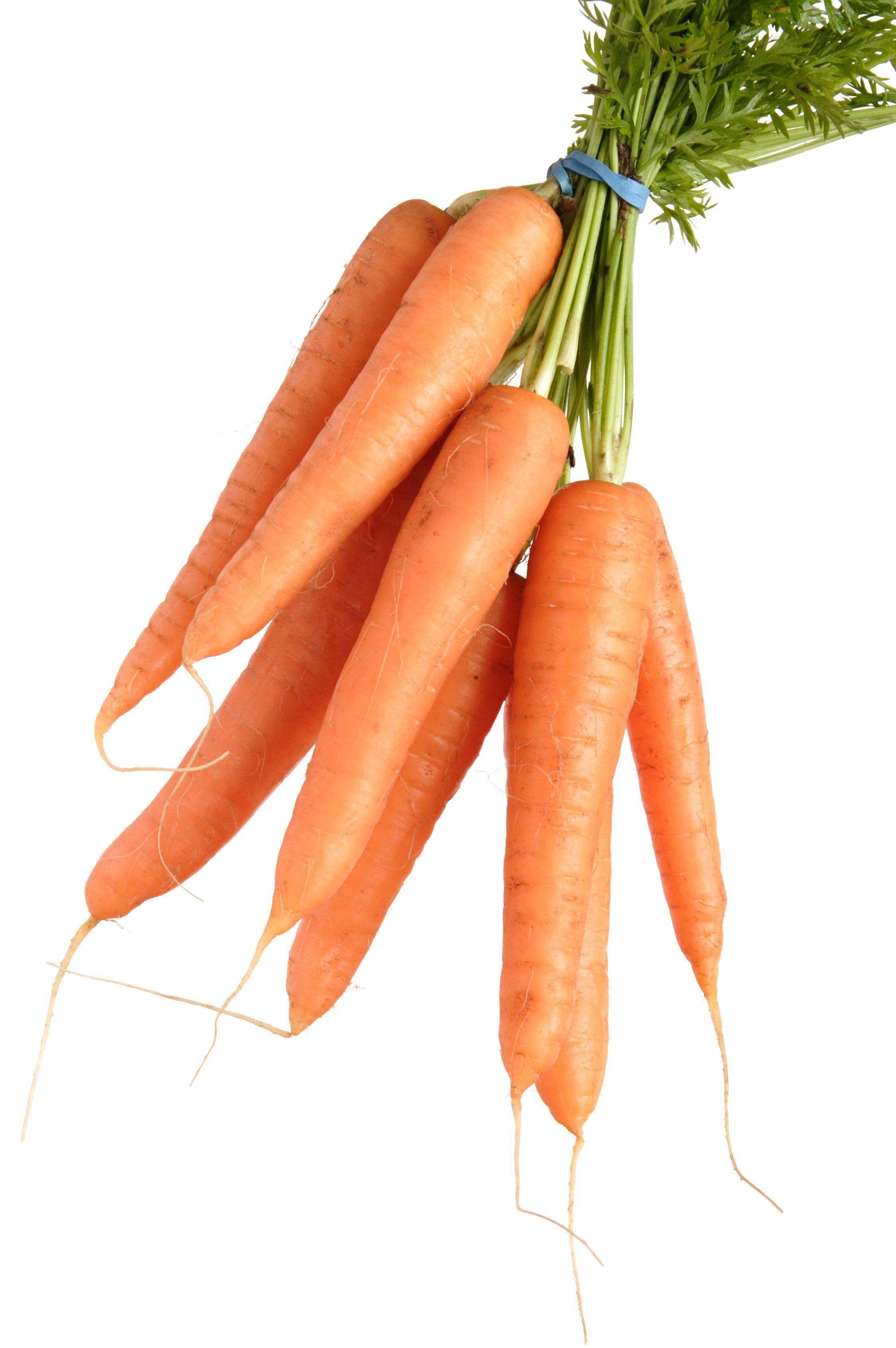 Coloriage carotte gratuit imprimer - Dessin de carotte ...