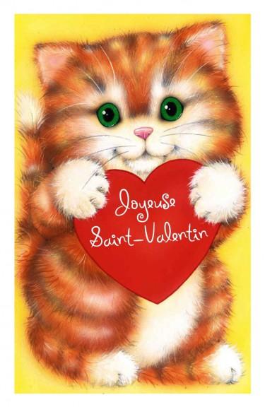 Chat St-Valentin