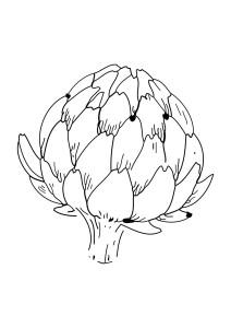 Coloriage artichaut