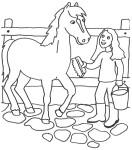 Coloriage cheval ecurie