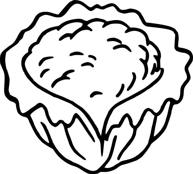 Coloriage chou fleur