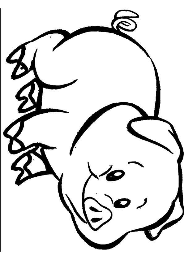 Coloriage cochon imprimer - Dessin cochon ...