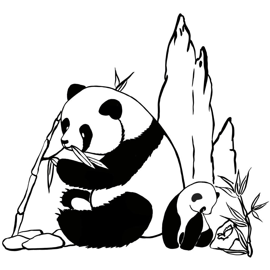 Coloriage de panda imprimer - Dessins de panda ...