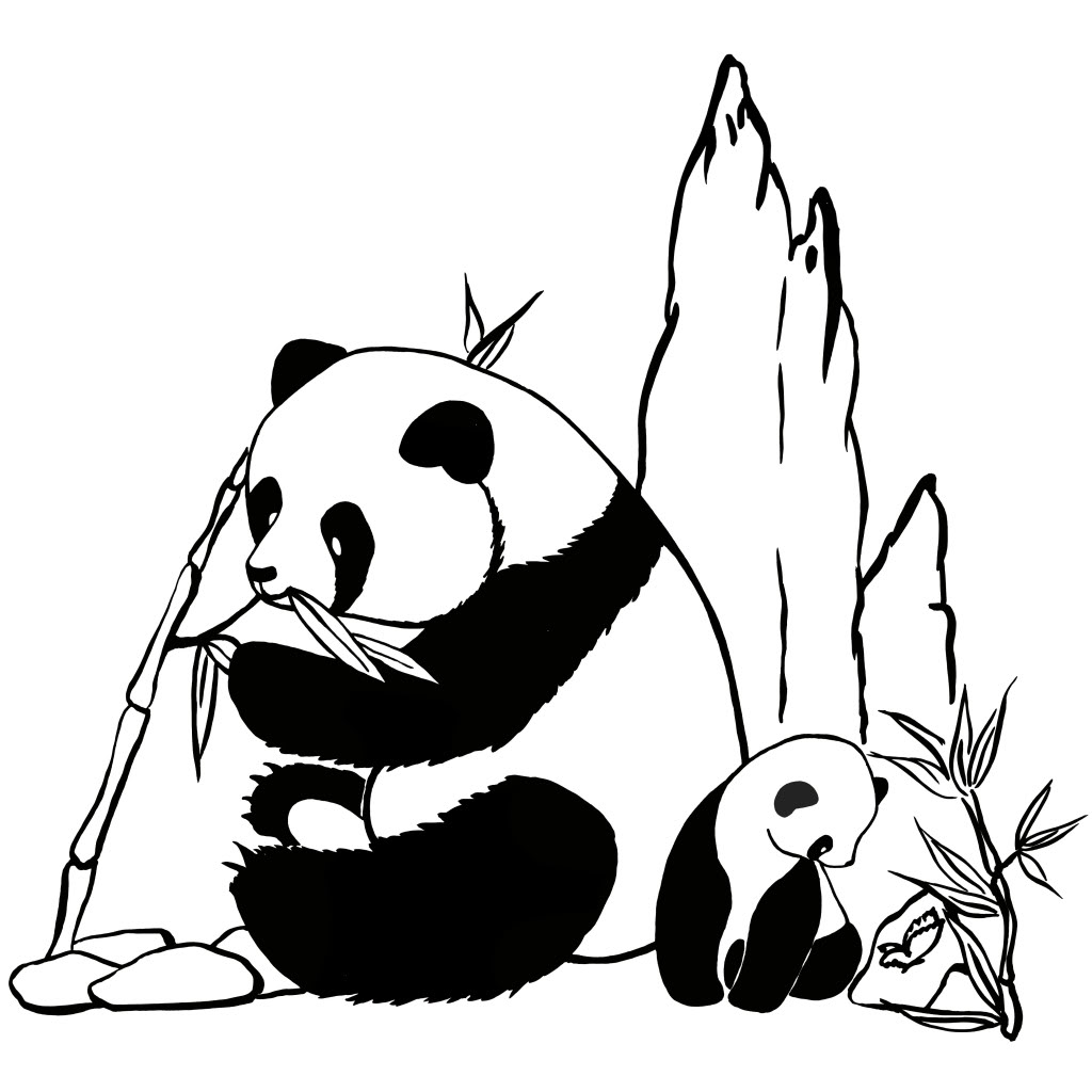 Coloriage De Panda A Imprimer