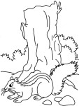Coloriage ecureuil