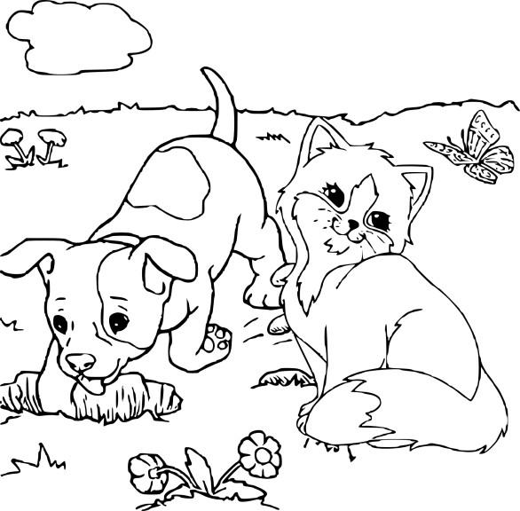 Dessin chien et chat