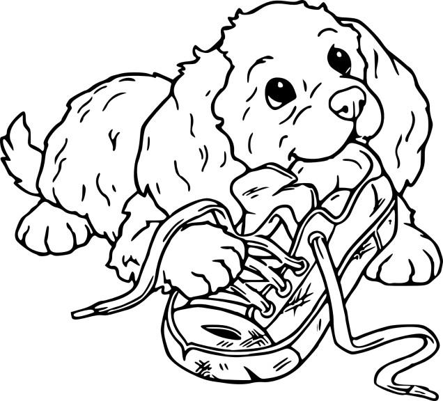 Coloriage chiot et dessin imprimer - Coloriage de chien ...