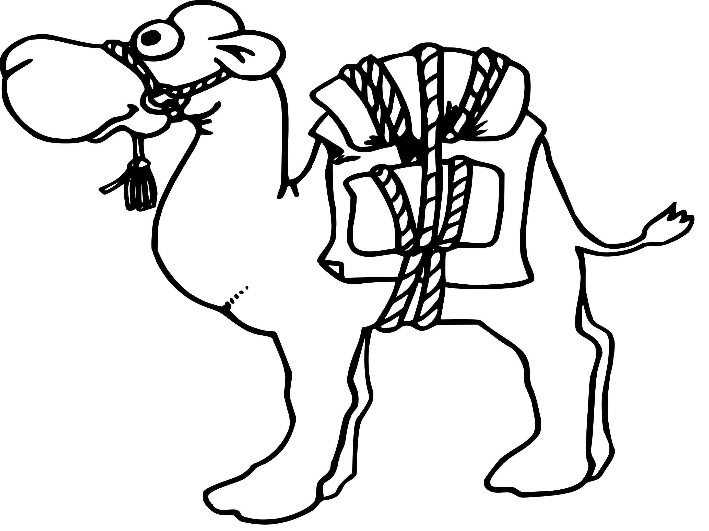 Coloriage chameau