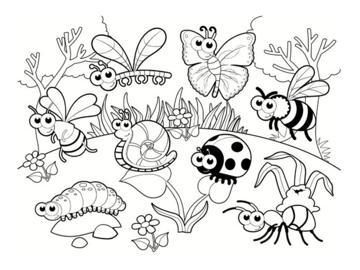 Coloriage coccinelle et papillon imprimer - Dessin de petit papillon ...