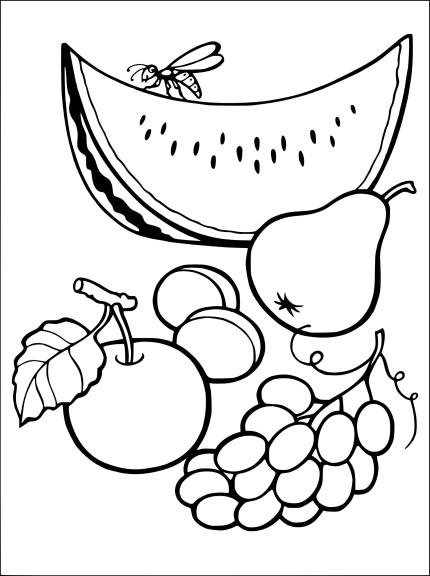 Coloriage les fruits