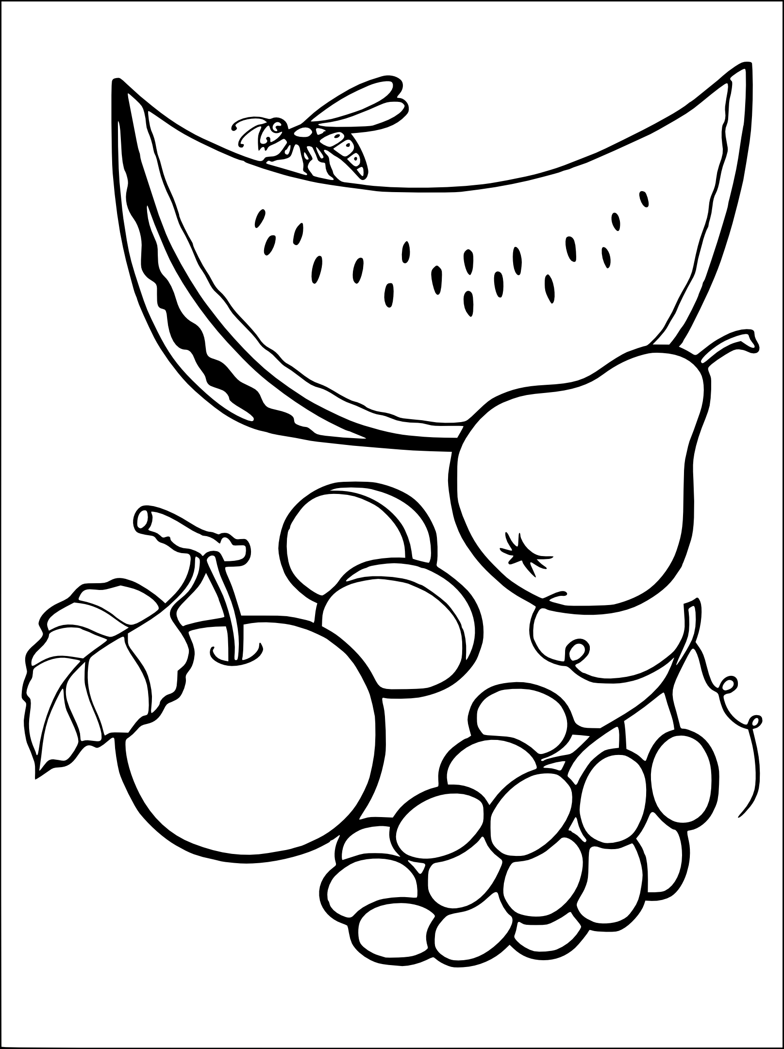 Coloriage les fruits