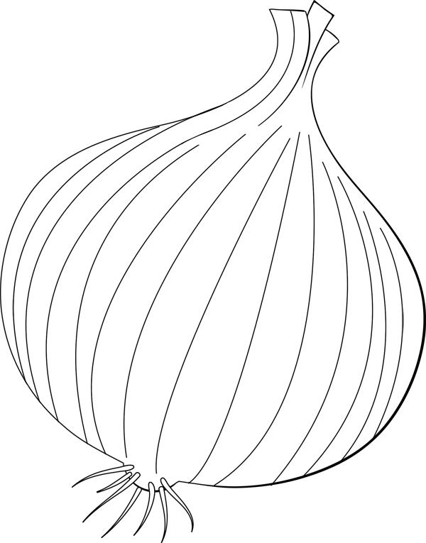 Coloriage oignon