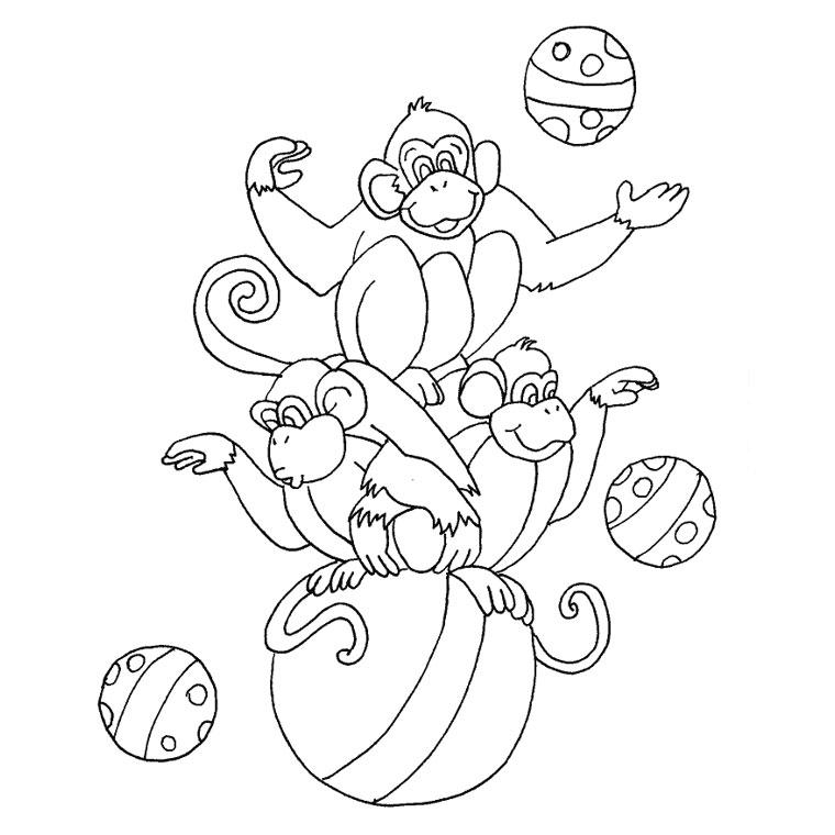 Coloriage singe de cirque