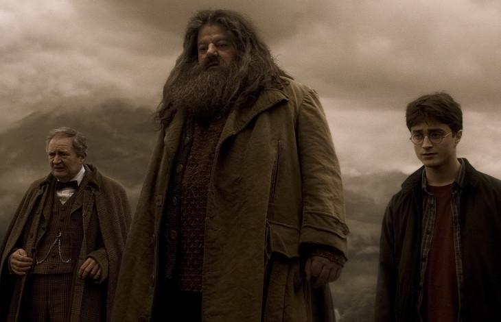 Harry Potter et Hagrid