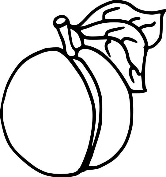 Coloriage abricot