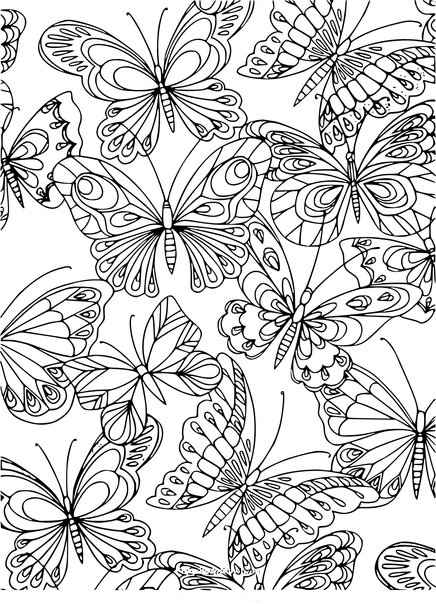 Coloriage adulte papillon à imprimer
