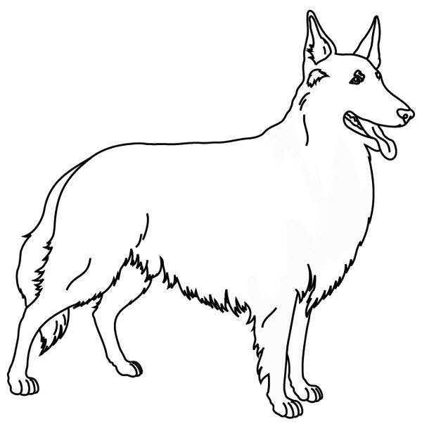 Coloriage chien colley imprimer - Dessin de chiot ...
