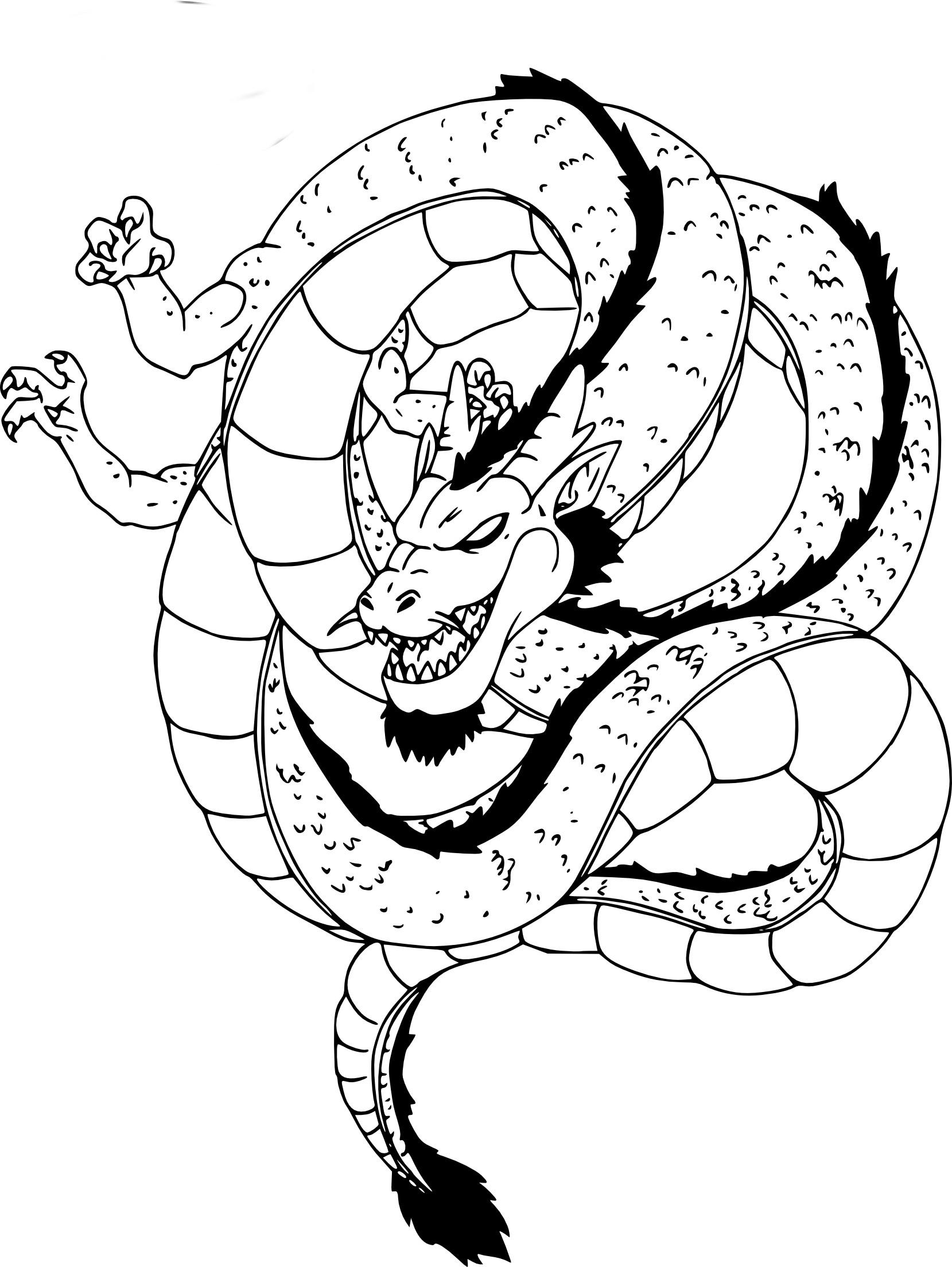 Coloriage Dragon Shenron De Dbz A Imprimer
