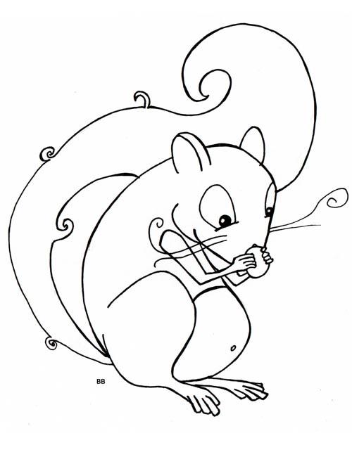 Coloriage ecureuil mange un gland