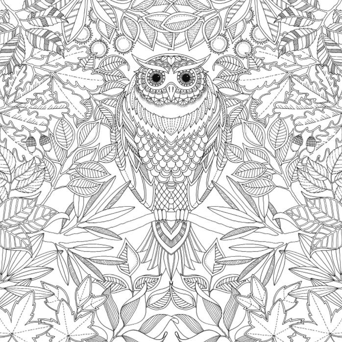 Coloriage hibou zen