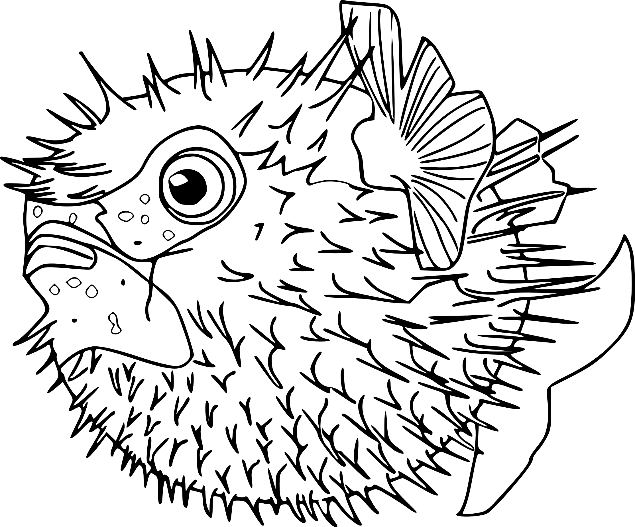 Bien-aimé Coloriage poisson lune à imprimer LC64