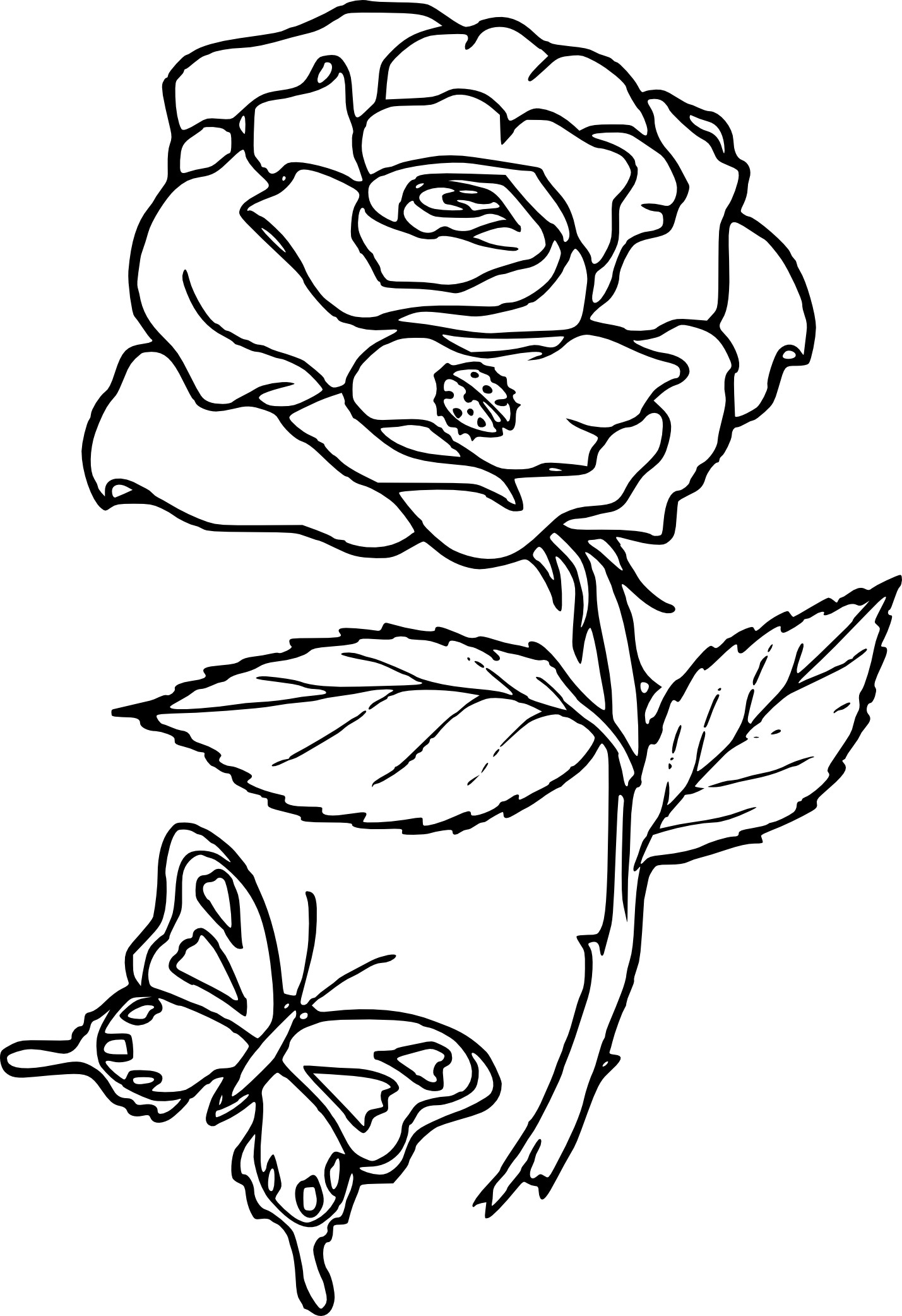 coloriage rose fleur imprimer. Black Bedroom Furniture Sets. Home Design Ideas