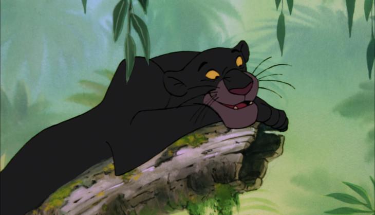 Bagheera panthere