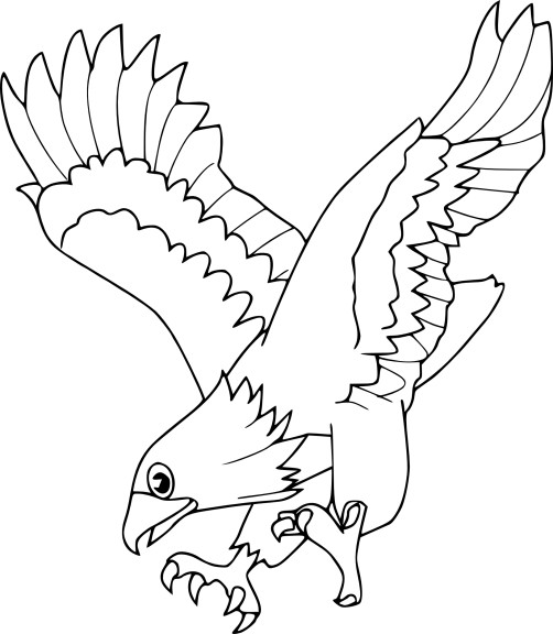 Coloriage aigle royale
