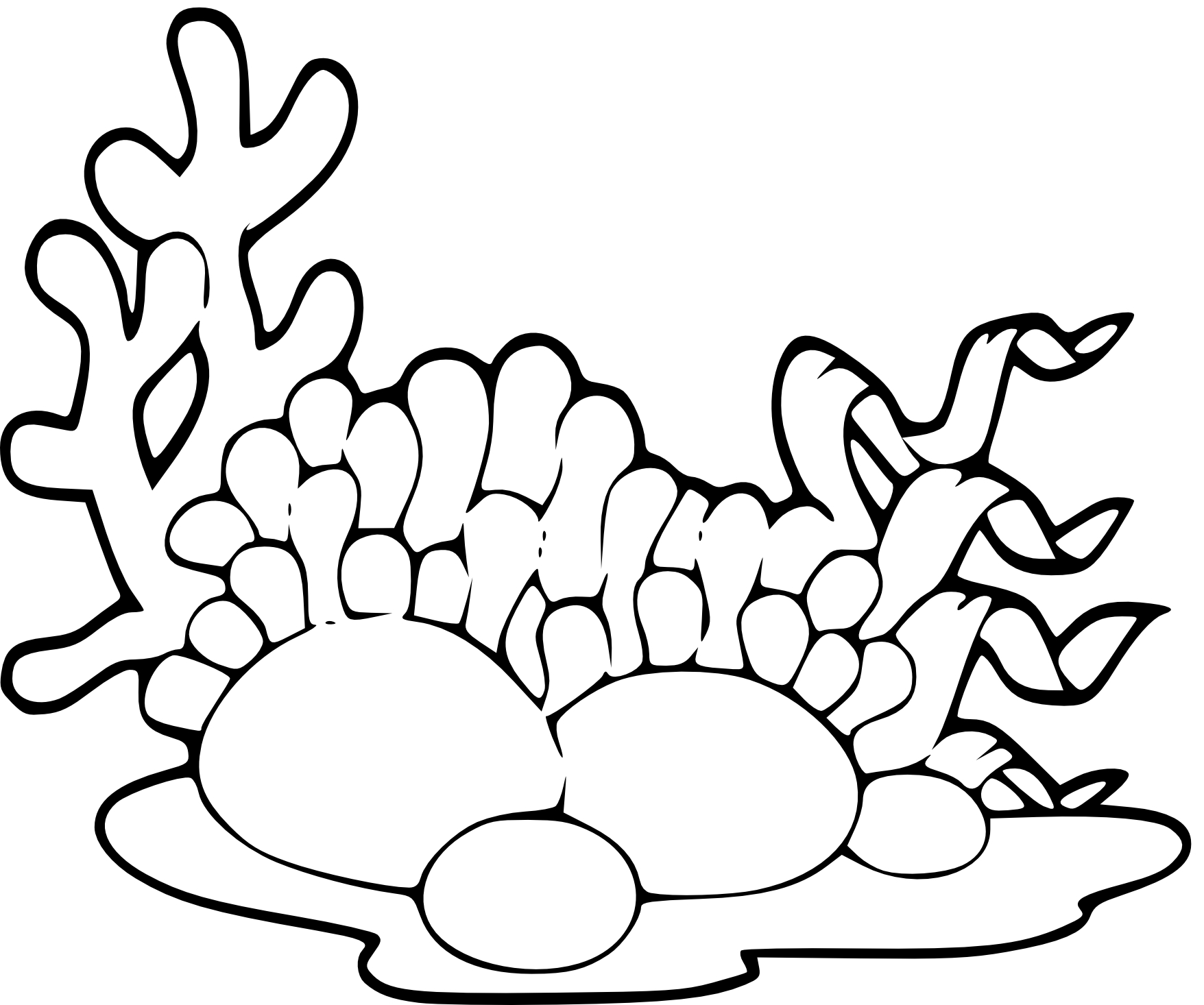Coloriage algues marines imprimer - Cenefas para dibujar ...