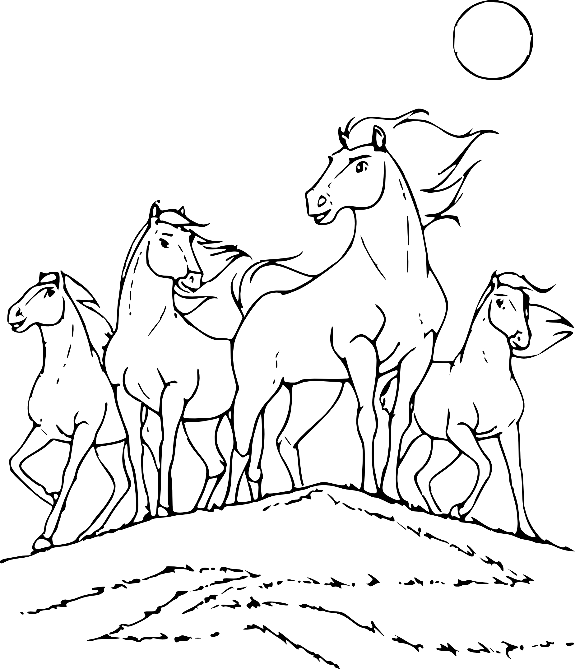 Coloriage Cheval Sauvage A Imprimer
