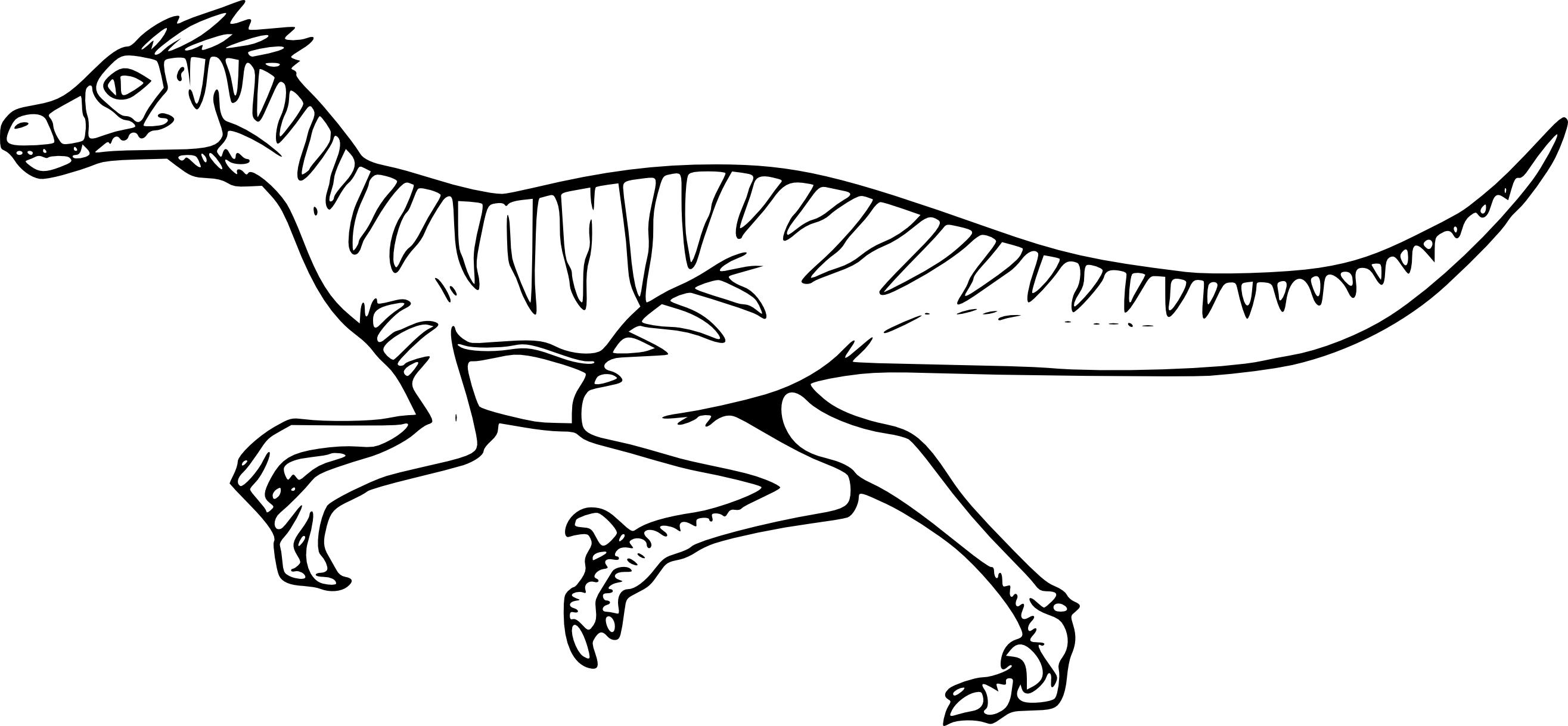 Coloriage Dinosaure Velociraptor A Imprimer