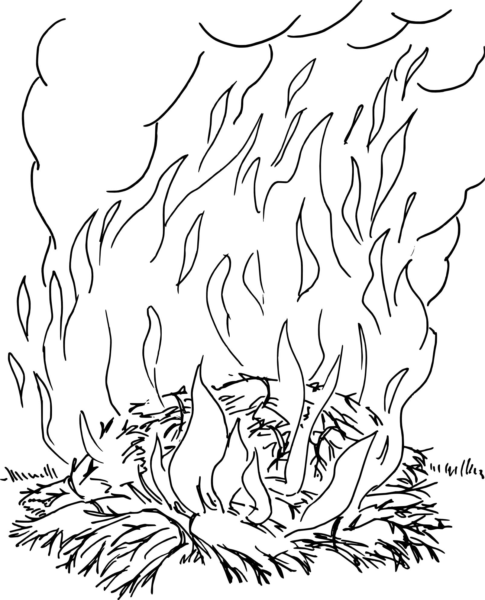 Coloriage Feu De Foret.Coloriage Incendie A Imprimer