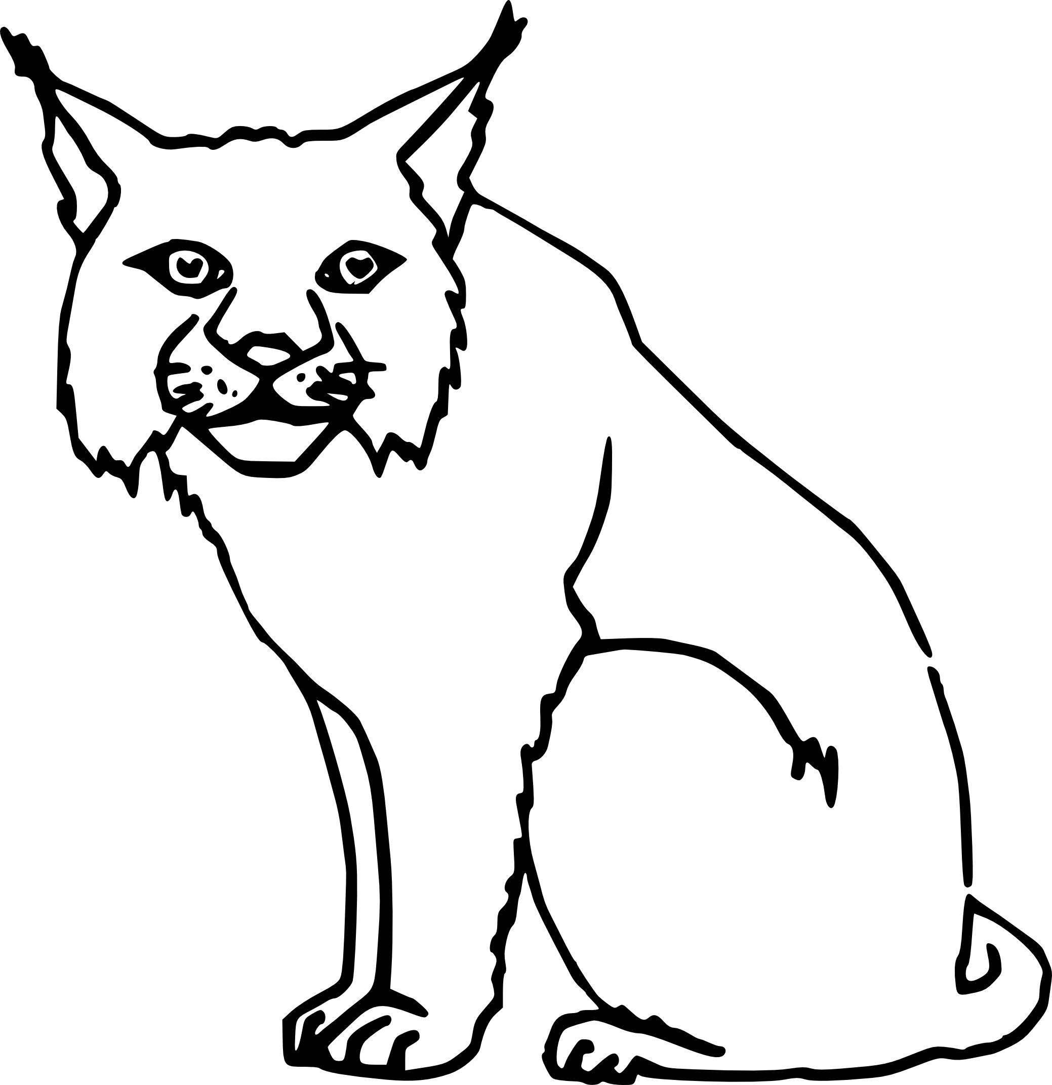 Lynx coloriage