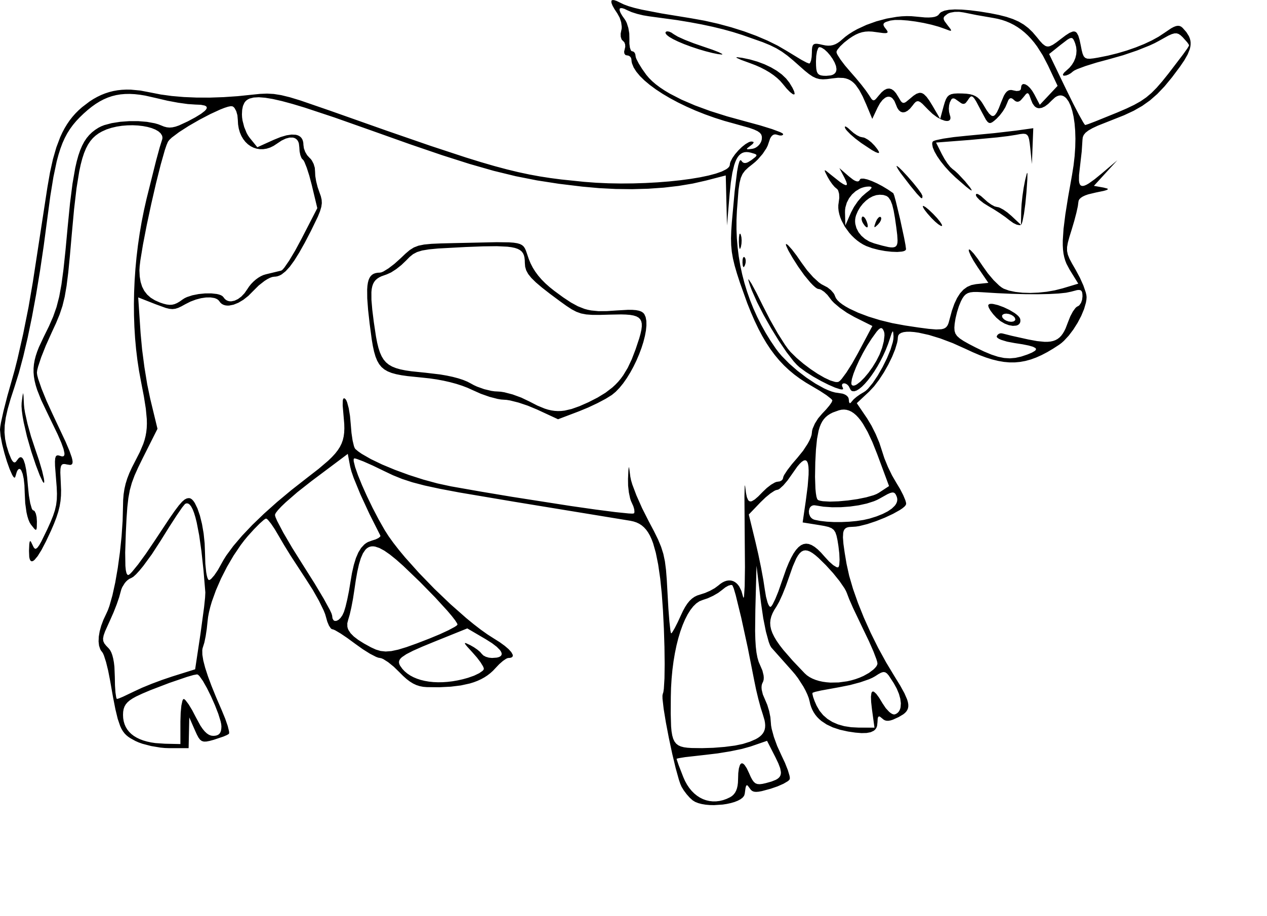 Veau coloriage - Dessin vache facile ...