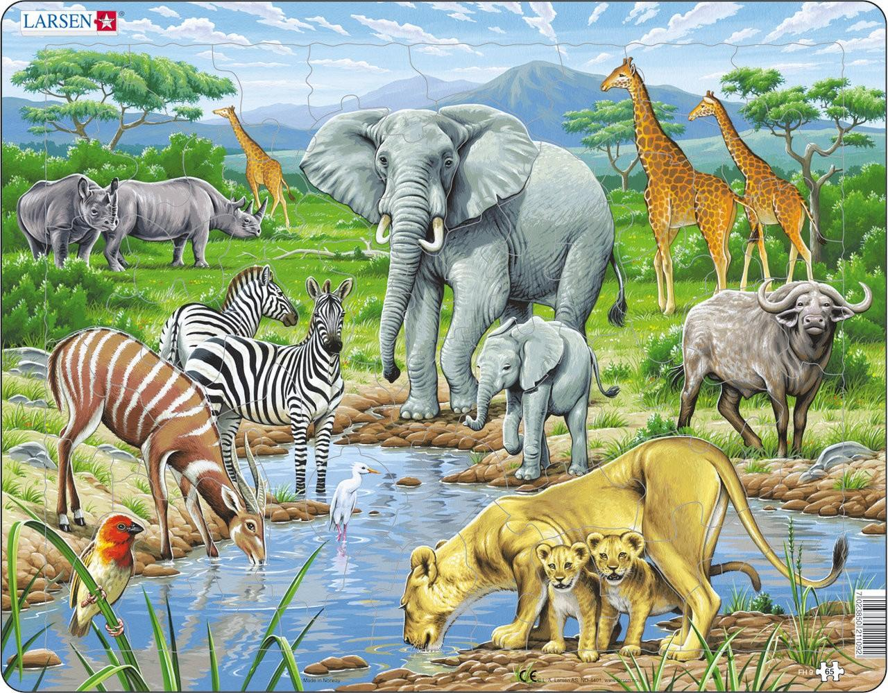 Coloriage Les Animaux De La Savane.Coloriage Animaux Savane A Imprimer