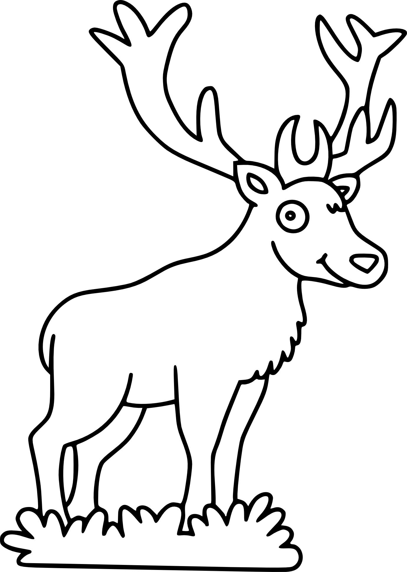 Cerf dessin