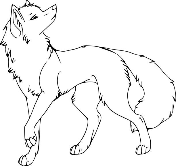 Coloriage louve