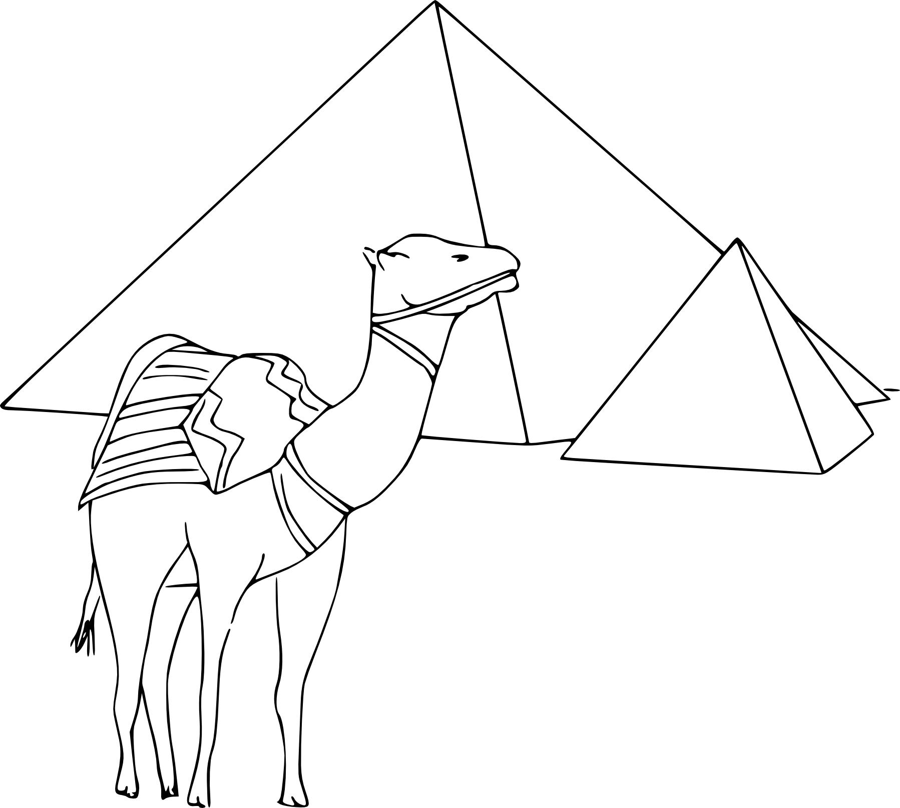 Coloriage pyramides d'Egypte