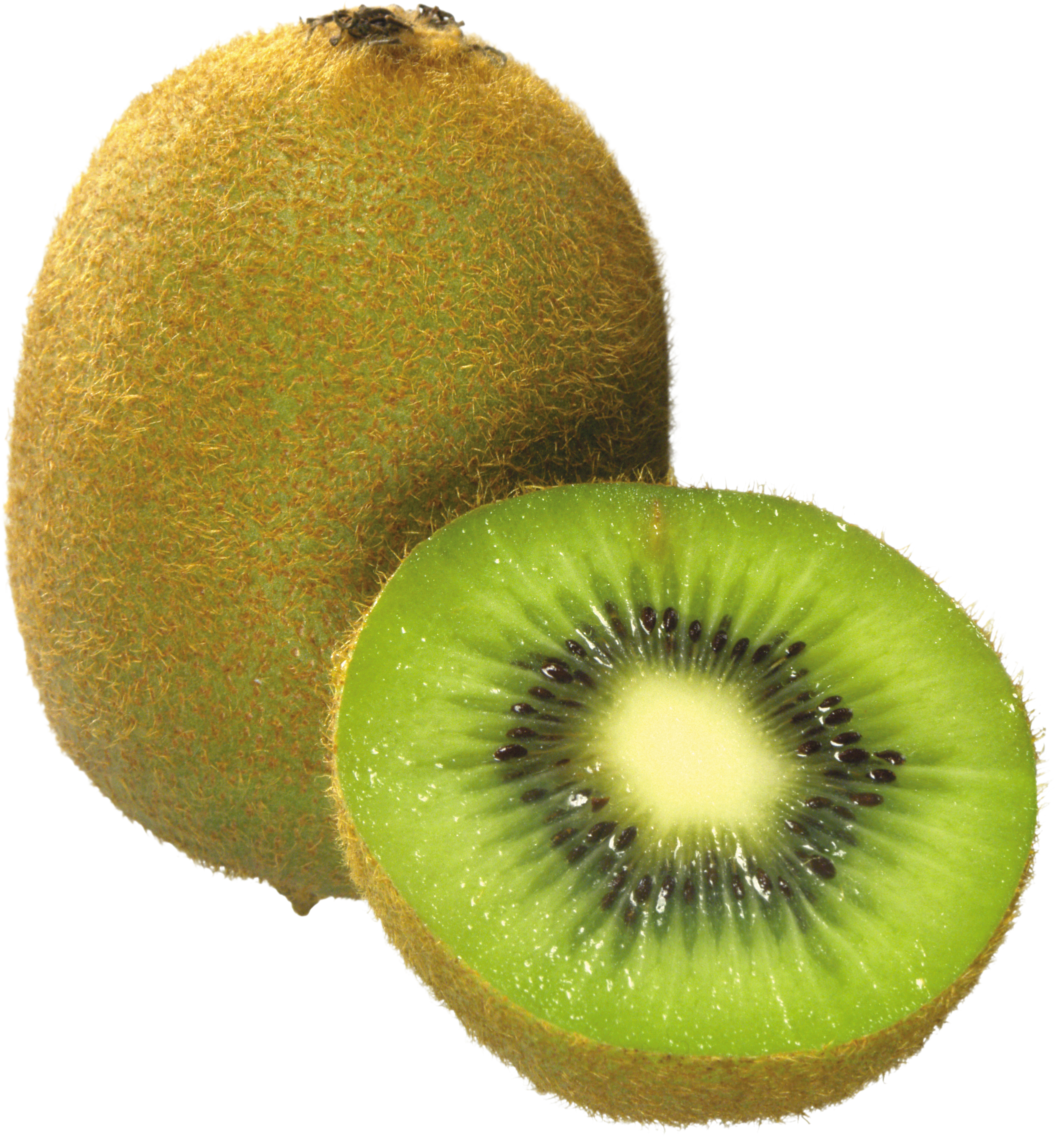 Coloriage Kiwi Fruit.Coloriage Kiwi A Imprimer